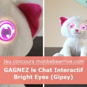 Jeu concours : gagnez des chats Bright Eyes